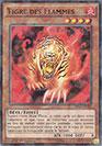 Tigre des Flammes