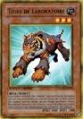 Tigre de Laboratoire