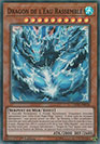 Dragon de l'Eau Rassemblé