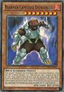 Bearman Capitaine Entraîneur