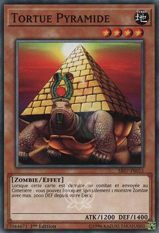 Tortue Pyramide