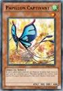 Papillon Captivant