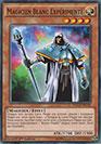 Magicien Blanc Expérimenté